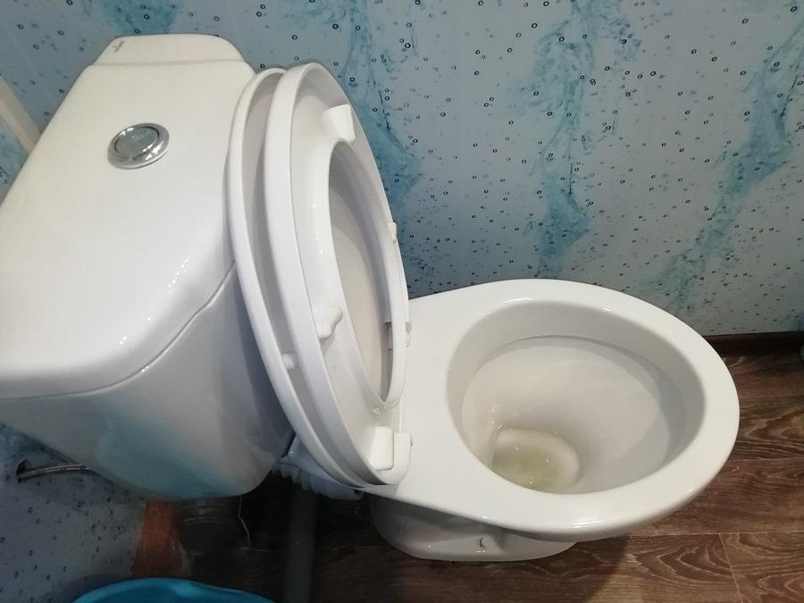 toilet leakage in house